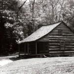 Carter Shields cabin3