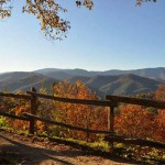 Cataloochee Overlook