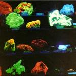 Fluorescent rocks
