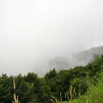 Fog at top