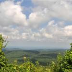 View TN