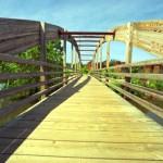 bridge just built